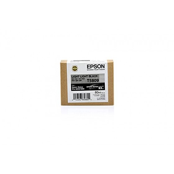 Originalna tinta Epson T5809 light light Bk